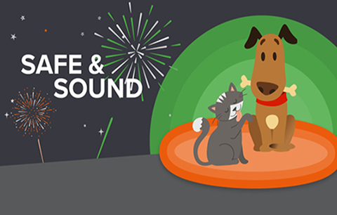 How to keep your cat & dog calm during fireworks