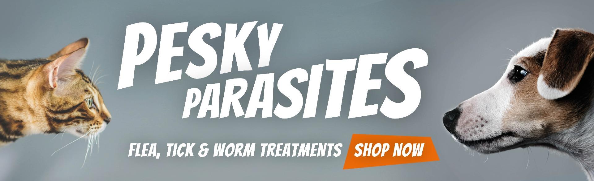 The flea, tick and worm treatment you need